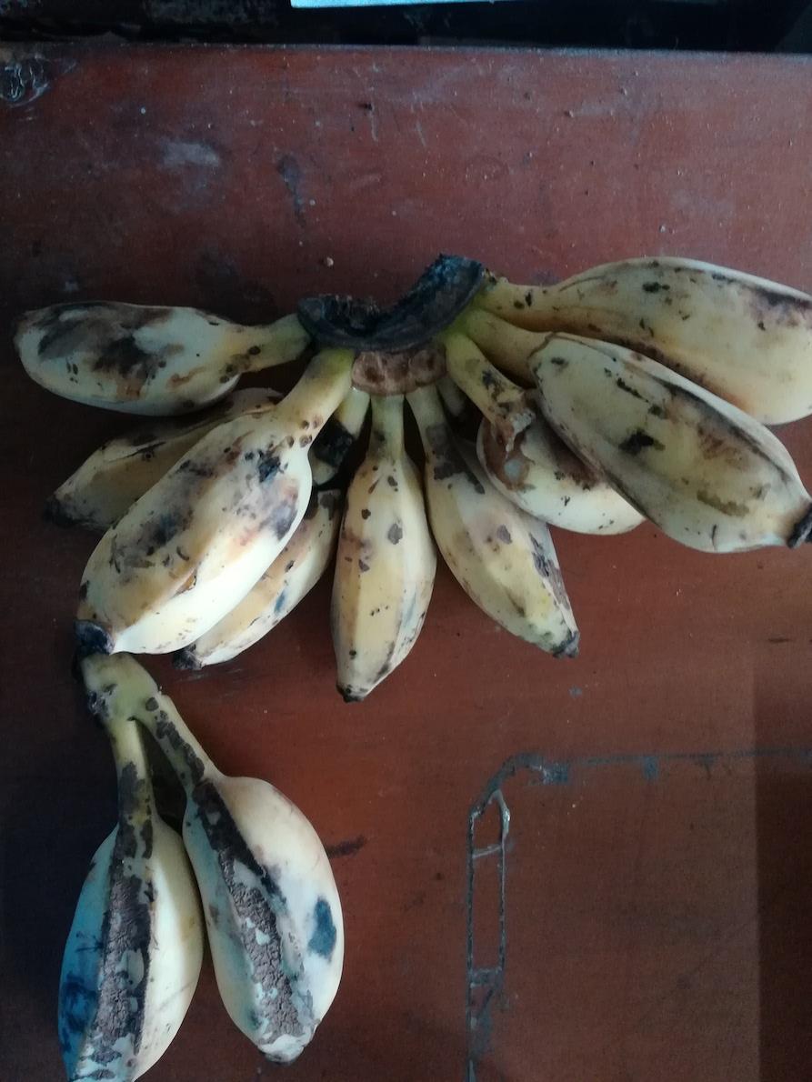 チャイニーズバナナ②