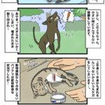 7 野生の生命力。