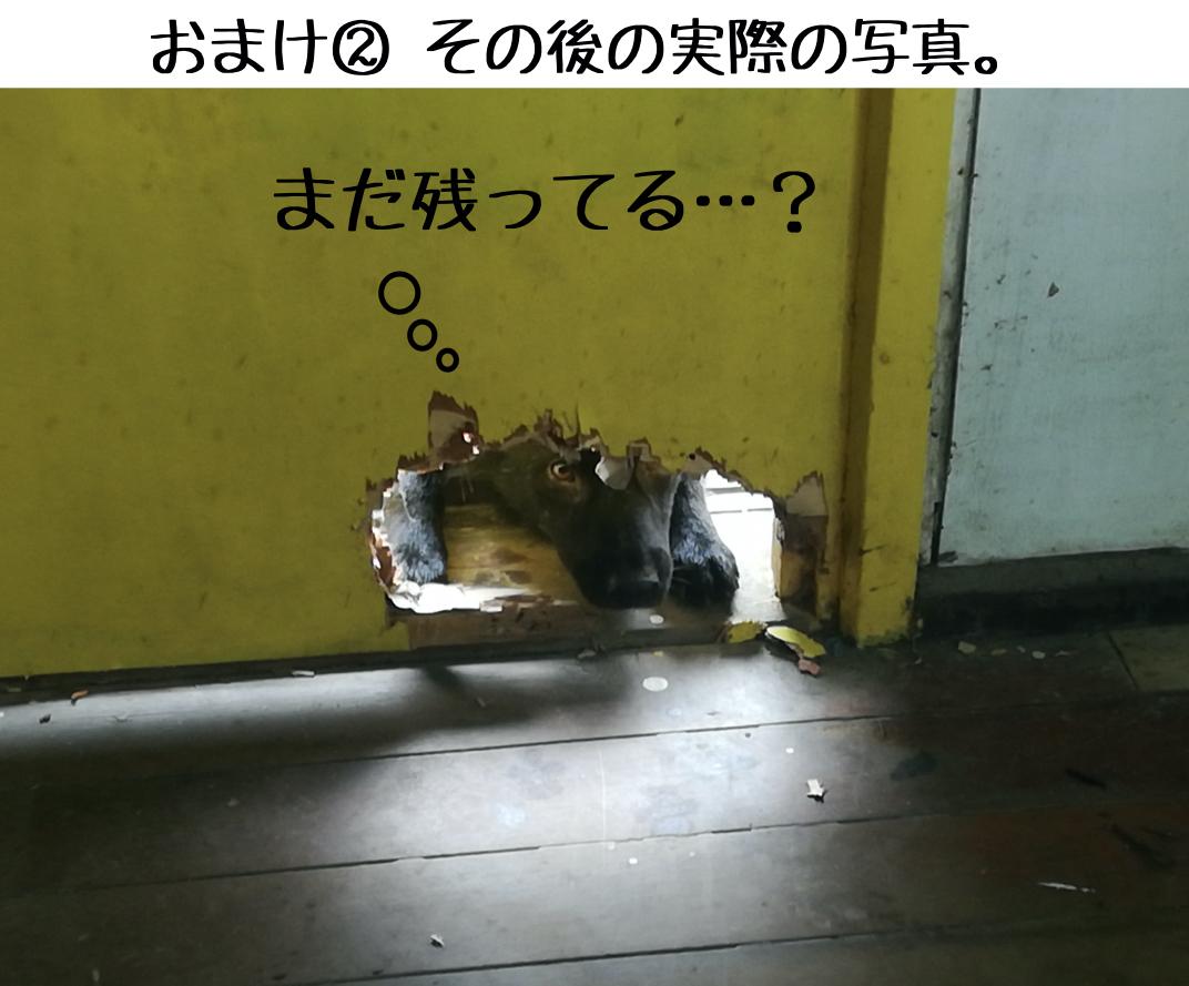 28 天才犬VSバカ④.006